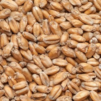 Пшеничный солод Курский солод